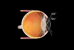 Volk Super Pupil XL - schwarz / individuelle Gravur möglich